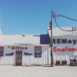 Shrimp Season/ 海老漁の季節